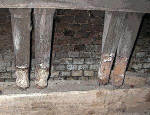 Knochenhammer